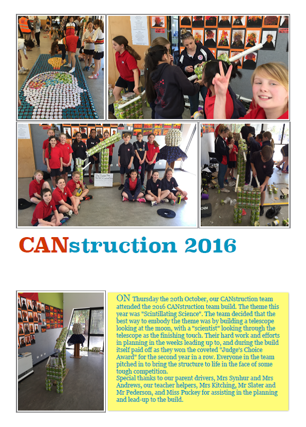 Senior students created a winning masterpiece at this year's CANstruction event