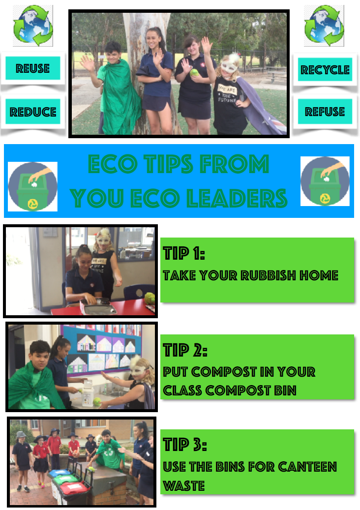 Tips from our Eco Leaders