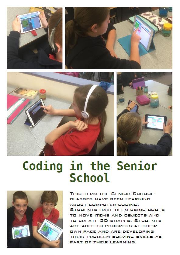 Senior coding