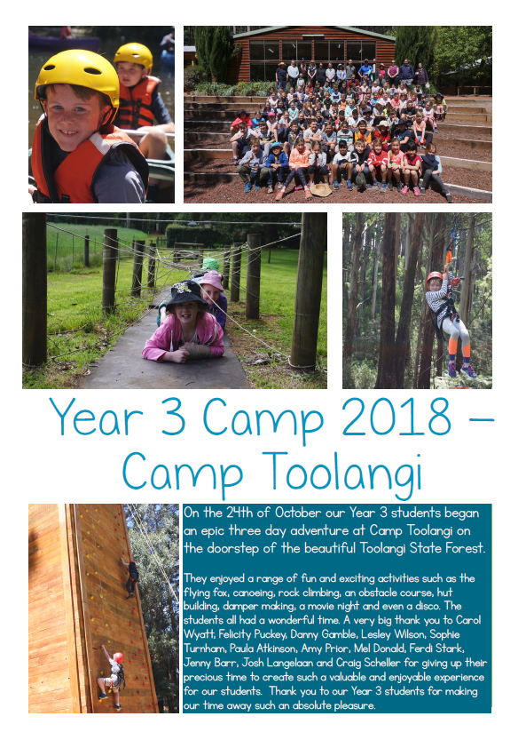 Year 3s at Camp Toolangi