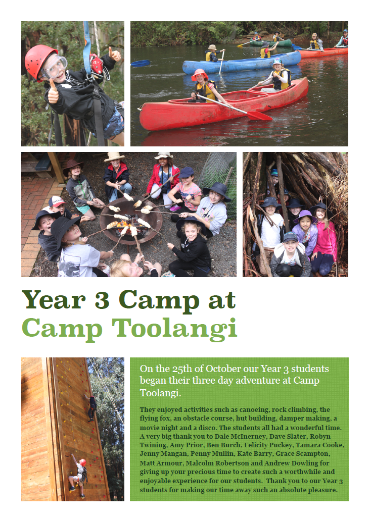 Year 3 students enjoy an adventurous camp at Toolangi